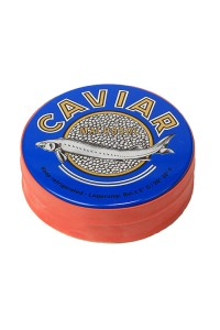 17.6 oz / 500 gr Russian Sturgeon Black Caviar